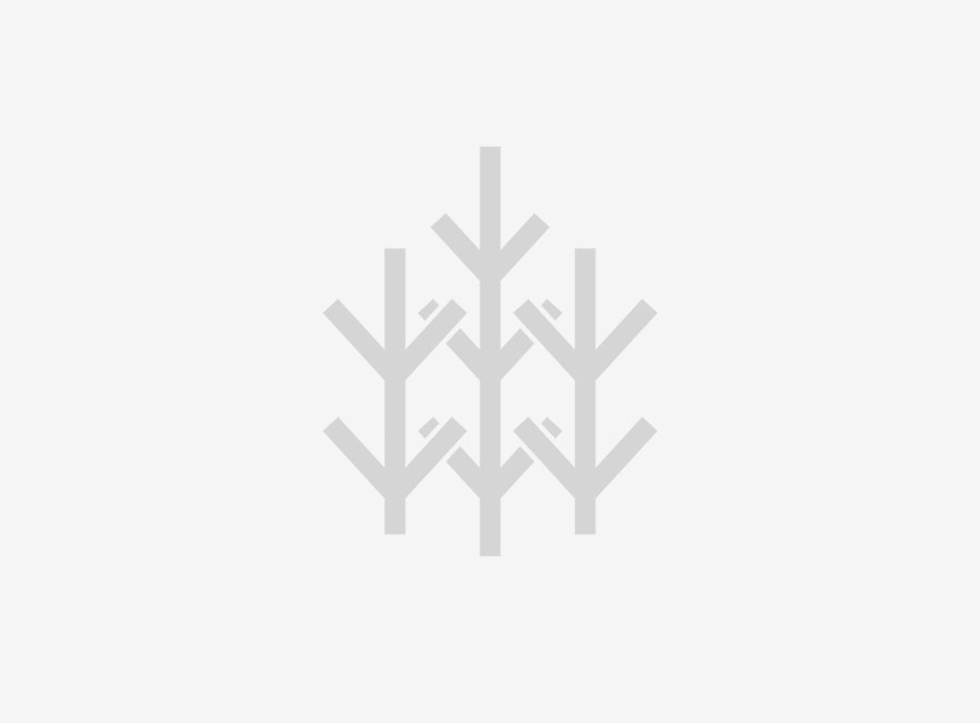 – Vil gi flere engasjerte skogeiere