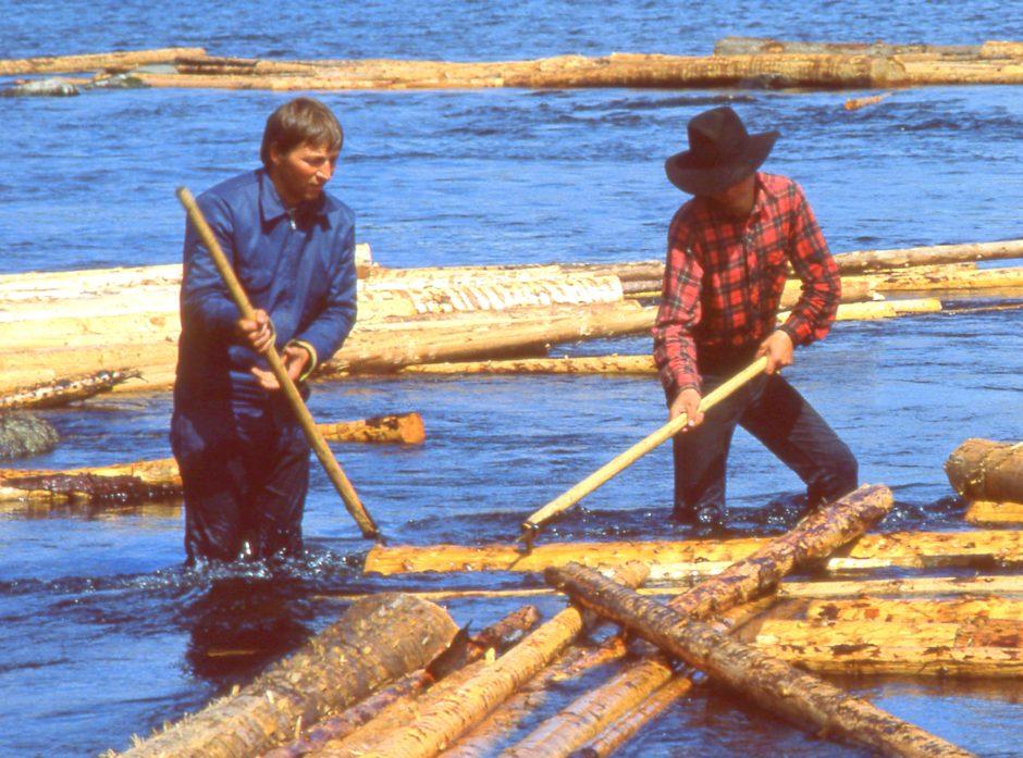 Organiseringen av skogeierlagene fulgte ofte vassdragene der tømmerfløtingen var transportårene fra skog til industri og annen foredling.