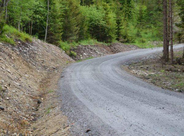 Det kan søkes om tilskudd til nybygging og ombygging av skogsbilvei. Resterende del av investeringen kan dekkes ved bruk av avsatte skogfondsmidler.