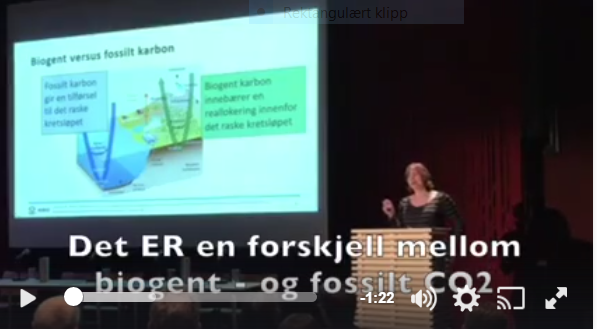 Skog- og kilmaforsker Gunhild Søgaard