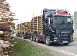Godt budsjett for tømmertransport