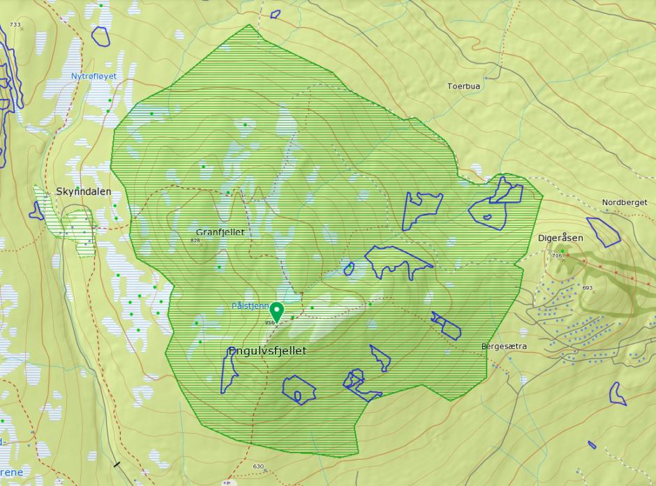 Bildet viser en naturtype (den store grønne) og nøkkelbiotoper etter MiS  (blå strek) i et område ved Engulvsfjellet i Hedmark, Naturtypen er et større skogområde som beskrives som «av forholdsvis ordinær karakter, men med beskjeden påvirkning fra moderne bestandsskogbruk». Totalarealet i naturtypen er 8 311 dekar og skjøtselsråd i Naturbase har vært: Lokaliteten bør settes av til fri utvikling uten hogstinngrep.