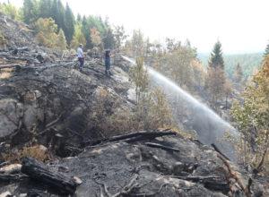 Advarer mot stor skogbrannfare