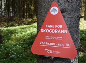 Godt år for Skogbrand forsikring