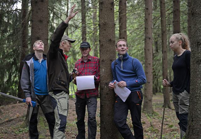 Hvor høy er furua? De rykende ferske NMBU-studentene er på skogtur for å lære skogregistrering. F.v.: Vebjørn Haugen Lindland, Henri Knackstedt, Christian Skyttermoen, Olav With Aasgård og Linnea Laubo.