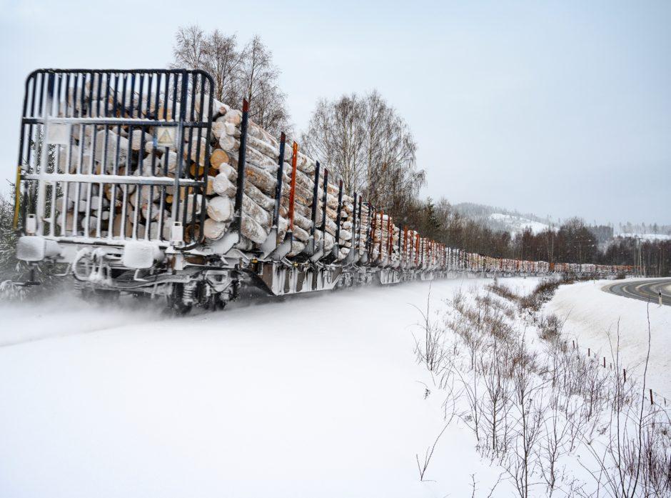 FULLE TØMMERTOG: Det siste året har nærmere tre millioner kubikkmeter med tømmer blitt transportert via jernbanen.