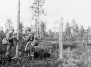 Landsskogtakseringen feirer 100 år