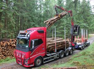 Vil prøvekjøre 74 tonns tømmervogntog