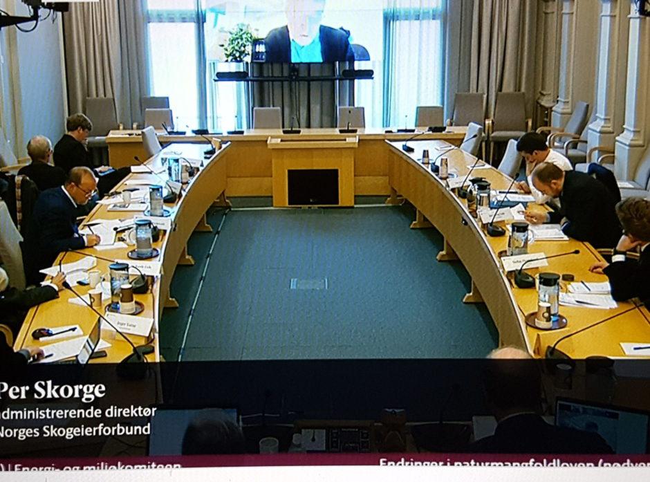 Skjermbildet fra Stortingets høring om endringer i naturmangfoldloven 14. mai 2020.