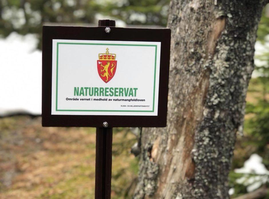 15 nye områder er vernet som naturreservat. Foto: Ida Aarø