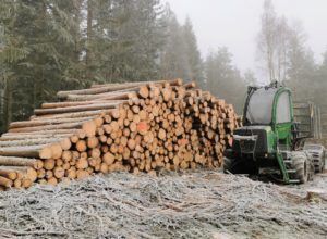 Skogeierforbundet i dag